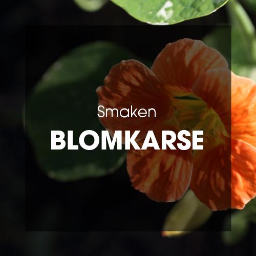 Smaken: Blomkarse
